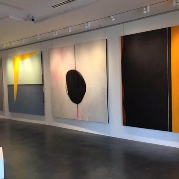 Dana Roes - Instal Gallery