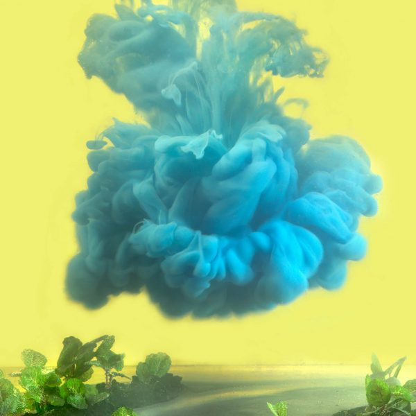 Kim Keever - J013 One of A Kind 13ba