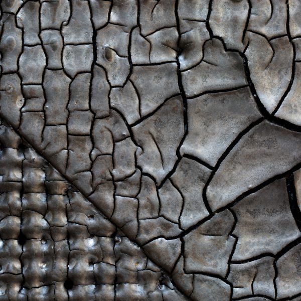 Scott Daniel Detail of Ceramic Tile Texture